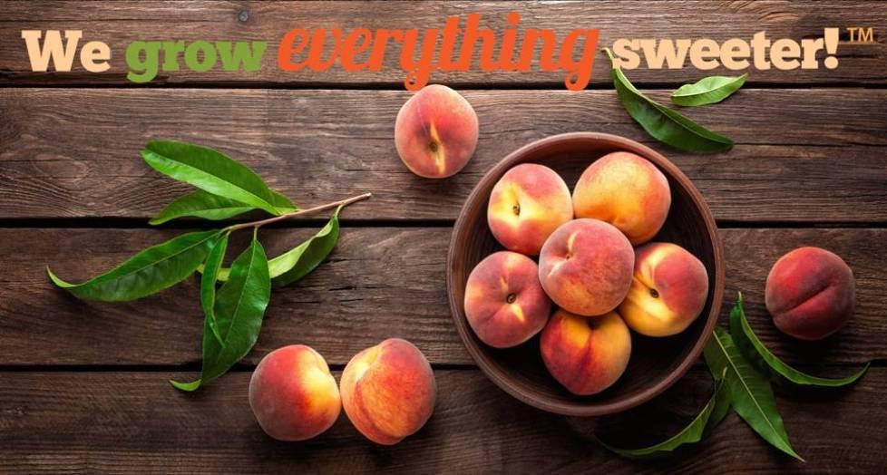 We Put the Peach in Georgia | Peach County Ga - Peach County